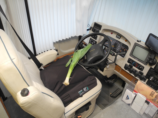 Just the other day. . . I found a leek in my RV!